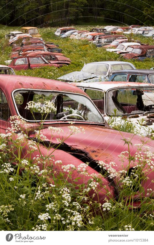 end of the road 3 Car Vintage car Old Broken Grief Senior citizen Esthetic End Nostalgia Environmental pollution Decline Transience Insurance Destruction