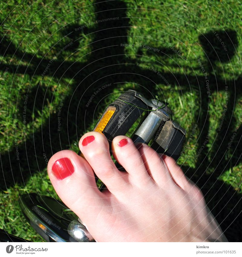 Woman Green Red Summer Joy Meadow Emotions Happy Feet Bicycle Speed Lawn Wheel Barefoot Toes Means of transport