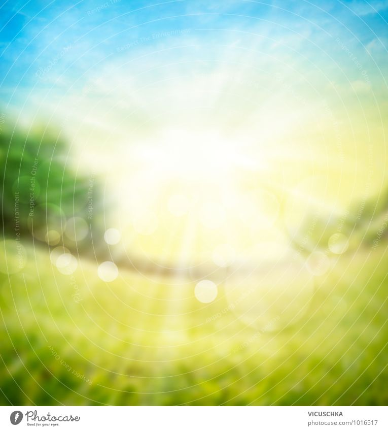 Blurred nature background with sunlight Design Summer Desk Nature Plant Elements Sky Horizon Sun Sunlight Spring Beautiful weather Garden Park Meadow Field