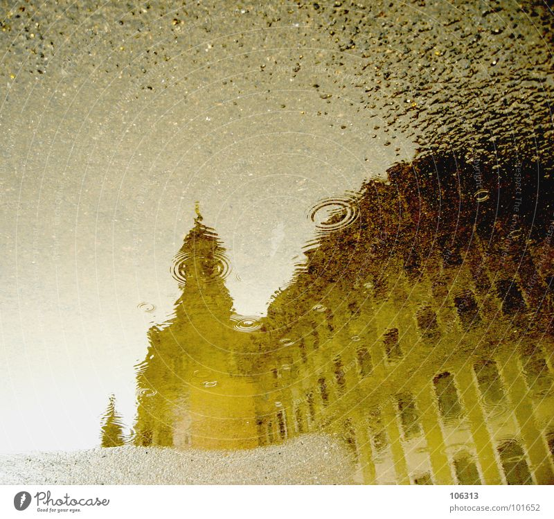 Water Rain Religion and faith Art Architecture Drops of water Wet Fresh Perspective Asphalt Dresden Fluid Monument Blow Manmade structures
