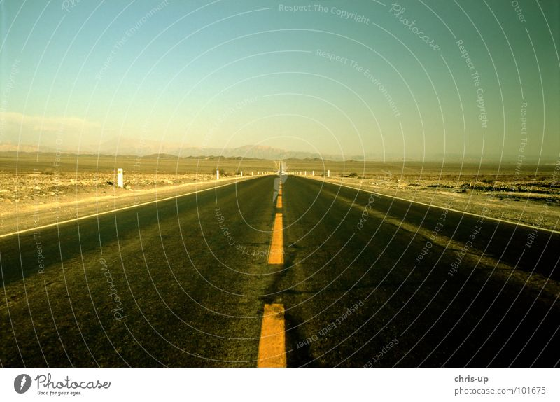 Which way? Pan-American Highway Truck Long-haul truck driver Loneliness Watch tower Lookout tower Peru Right ahead Geoglyph Paracas Vacation & Travel Hiking