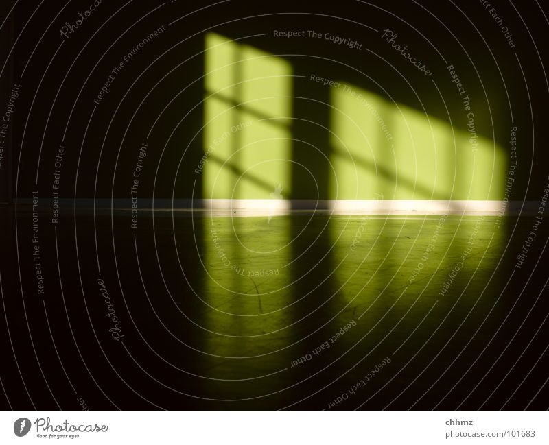 Green Colour Dark Wall (building) Window Bright Room Floor covering Diagonal Parallel Horizontal Rung Aurora Borealis Ghost light