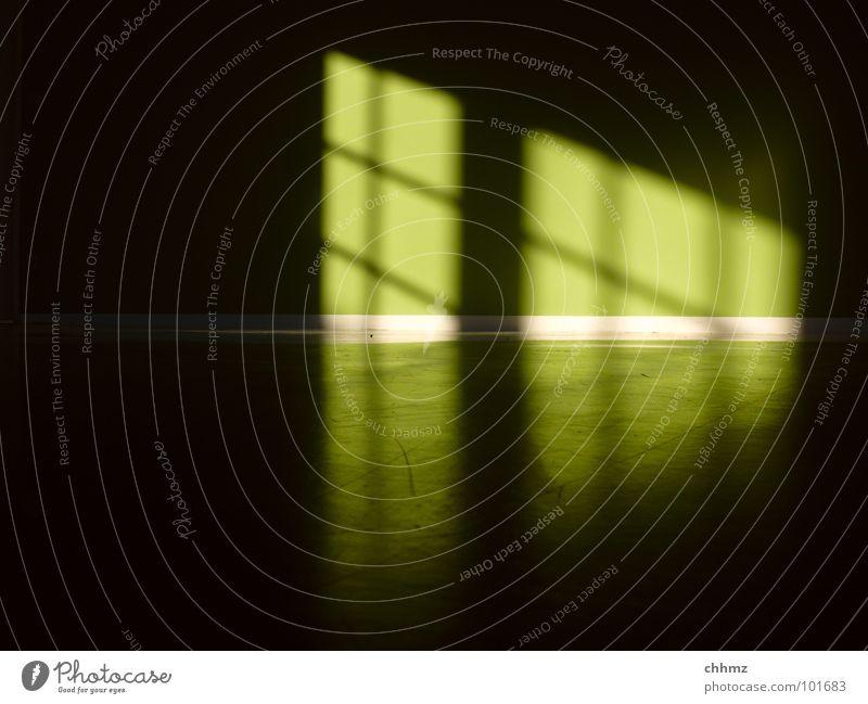 Green Colour Dark Wall (building) Window Bright Room Floor covering Diagonal Parallel Horizontal Rung Aurora Borealis Ghost light