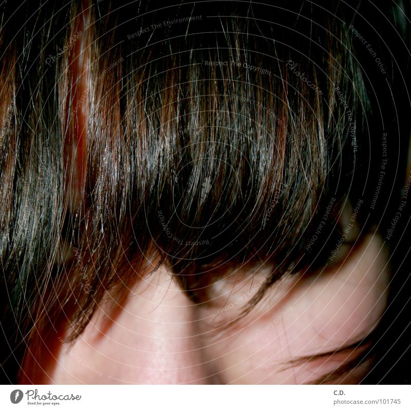 Youth (Young adults) Face Black Hair and hairstyles Brown Skin Auburn
