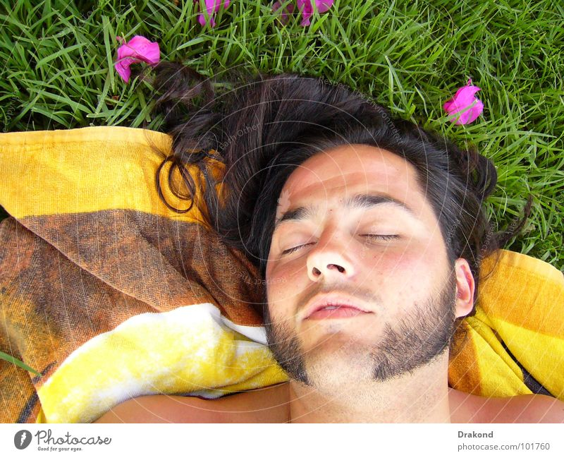 Human being Man Nature Flower Calm Eyes Loneliness Hair and hairstyles Dream Mouth Nose Rose Lawn Peace Facial hair