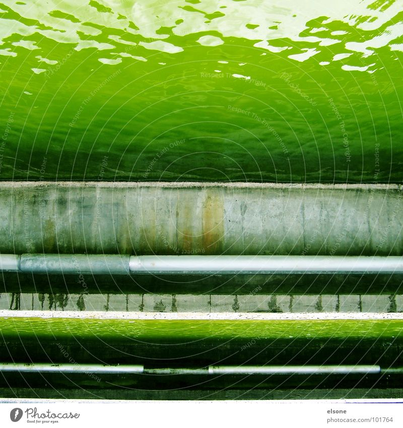 mr green Pond Poison Acid Body of water Wet Dirty Green Concrete Well I Square Sharp-edged Stuttgart Dresden Riesa Bans Derelict River Brook Water Fluid