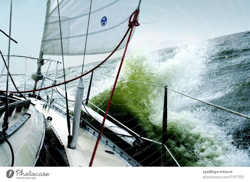 sail Sailing Sport boats Waves White crest Leisure and hobbies Vacation & Travel Sports Playing Water Sailboat Yacht Wind Freedom Nature sailing boat