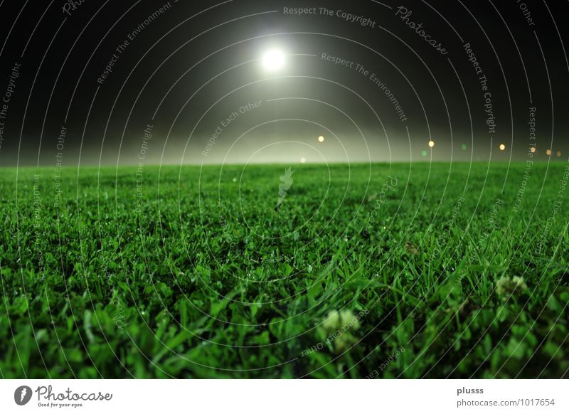 Summer Lighting Meadow Grass Sports Moody Leisure and hobbies Idyll Soccer Dusk Anticipation Moon Floodlight Night sky Football pitch Ball sports