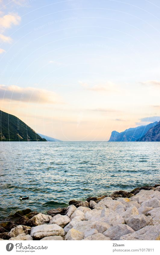 lago di garda Vacation & Travel Summer Summer vacation Winter vacation Nature Landscape Sky Beautiful weather Alps Mountain Lakeside Lake Garda Esthetic