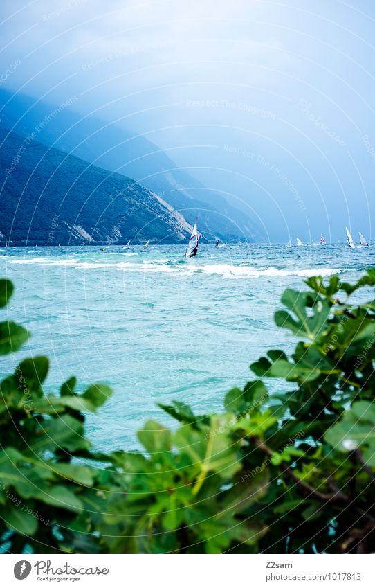 ora Lifestyle Style Leisure and hobbies Vacation & Travel Tourism Summer vacation Aquatics Windsurfing Surfing 2 Human being Nature Landscape Water Sky