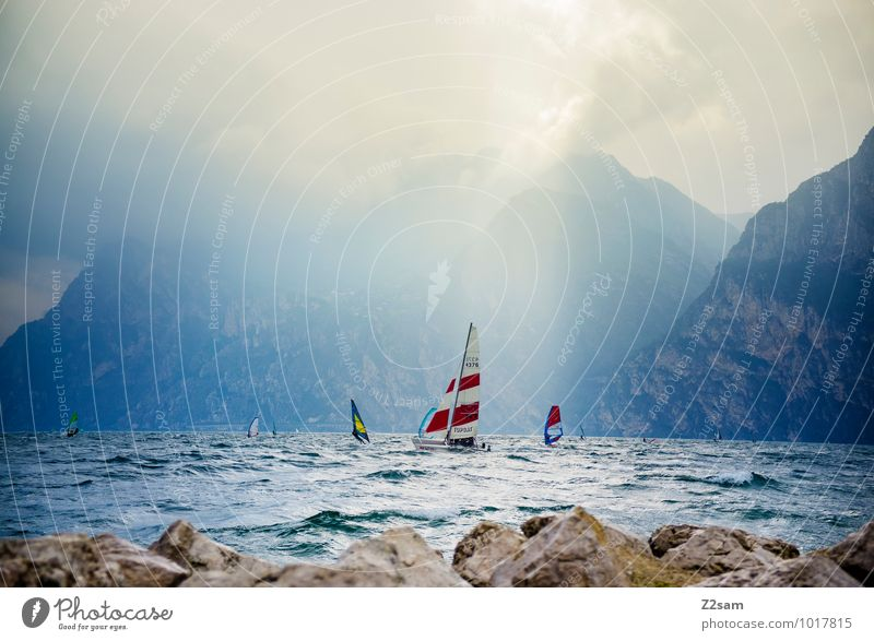 lago di garda Leisure and hobbies Sports Aquatics Sailing Environment Nature Landscape Water Sky Clouds Sun Sunlight Summer Weather Beautiful weather Movement