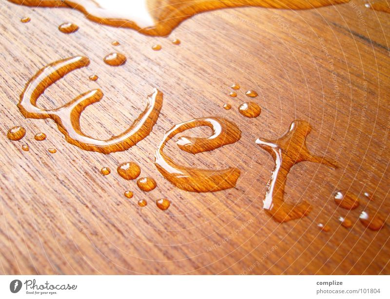 Nature Water Wood Brown Wet Fresh Drops of water Characters Letters (alphabet) Soft Wellness Swimming pool Write Services Typography Obscure