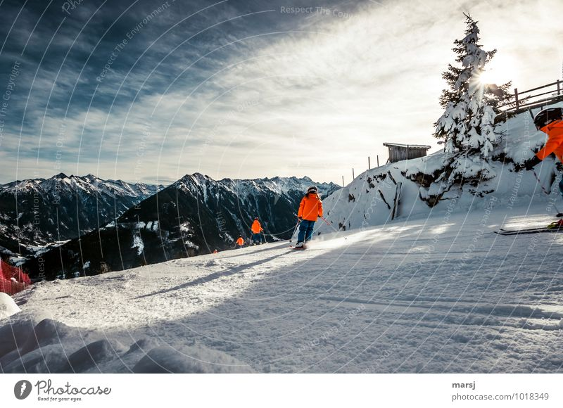 Human being Vacation & Travel Joy Winter Mountain Movement Snow Sports Freedom Group Together Leisure and hobbies Tourism Trip Joie de vivre (Vitality) Fitness