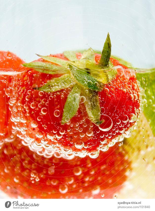 Plant Summer Water Red Fruit Fresh Nutrition Beverage Berries Vegetarian diet Strawberry Lime