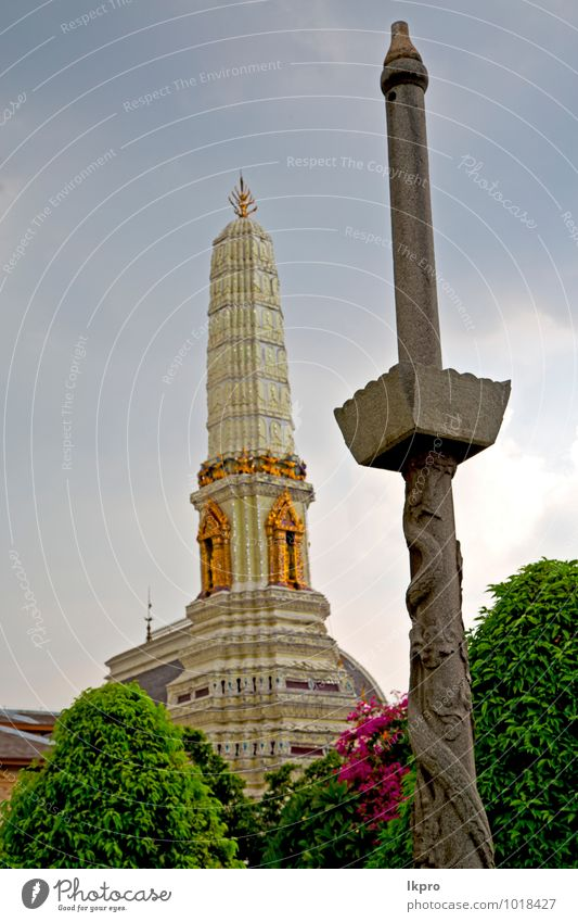 bangkok in temple Sky Nature Vacation & Travel Plant Tree Flower Architecture Building Religion and faith Stone Art Metal Rain Dirty Tourism Bushes