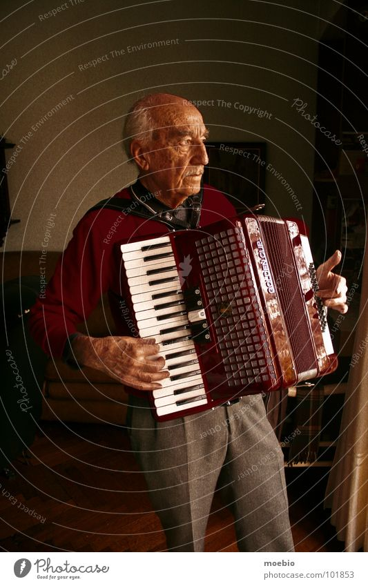 Senior citizen Music Grandfather Accordion