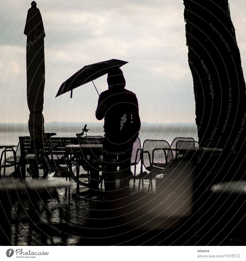 agitating Masculine Young man Youth (Young adults) Man Adults Bad weather Storm Wind Gale Rain Stand Cold Gray Hope Vacation & Travel Services End of the season