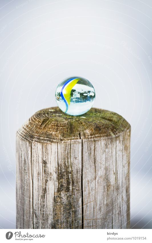 pole position Marble Glass ball Pole Esthetic Fresh Positive Round Calm Infancy Good luck charm Transparent Children's game Wood Above 1 Colour photo
