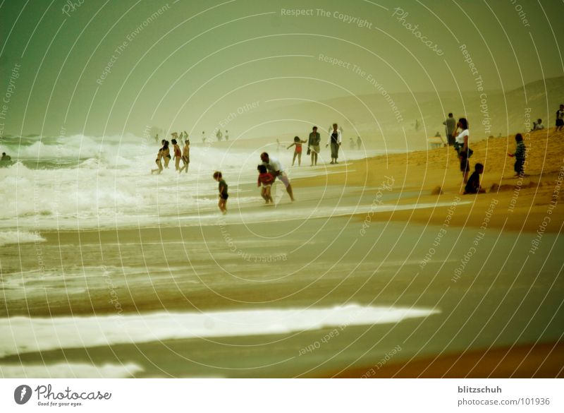 beachlife Beach Beach life Human being Waves Vacation & Travel France Ocean Emotions Foam Together Joy Summer Life peoples Group Fog Wild animal sea Water