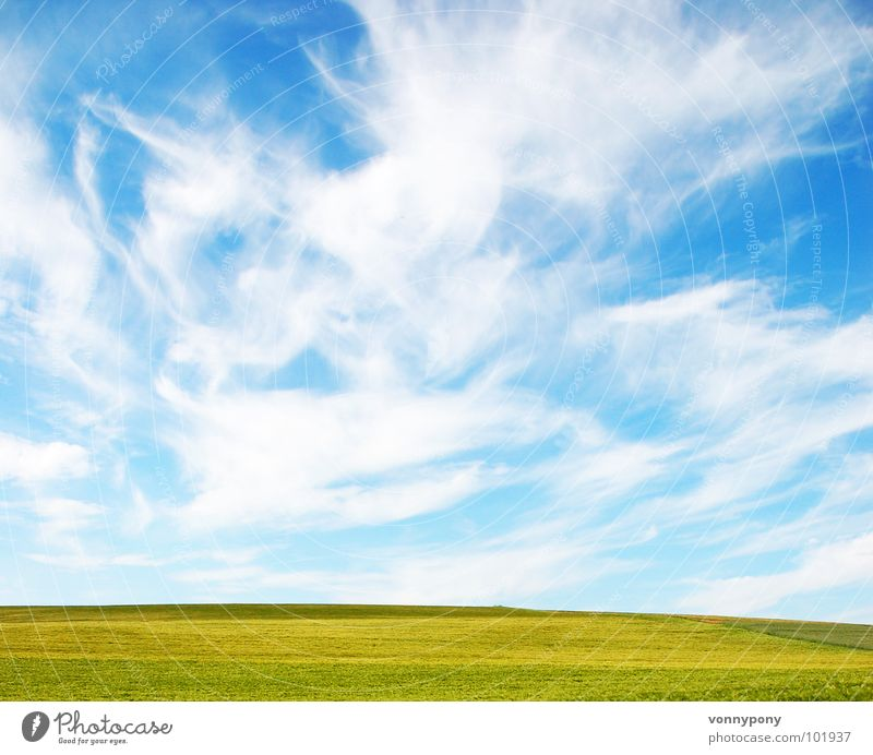 Nature Sky Green Blue Summer Vacation & Travel Clouds Yellow Far-off places Meadow Spring Happy Bright Horizon Infinity Americas