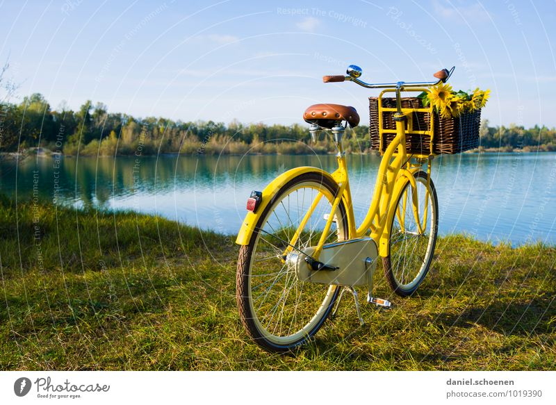 Blue Summer Sun Relaxation Calm Yellow Lake Leisure and hobbies Trip Cycling tour