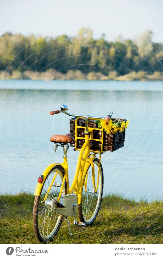 the postman is swimming Lifestyle Leisure and hobbies Trip Cycling tour Summer Nature Landscape Lakeside Bicycle Blue Yellow Joie de vivre (Vitality)
