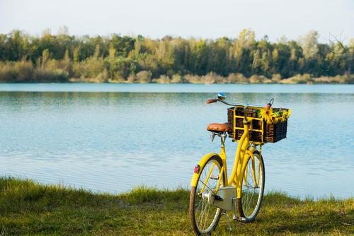 Blue Green Summer Relaxation Calm Yellow Swimming & Bathing Leisure and hobbies Trip Beautiful weather Lakeside Cycling tour