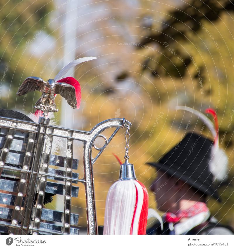 Homemade music. Feasts & Celebrations Fairs & Carnivals pageant Parade Human being Feminine Head Music Musician Glockenspiel metallophone Percussion instrument