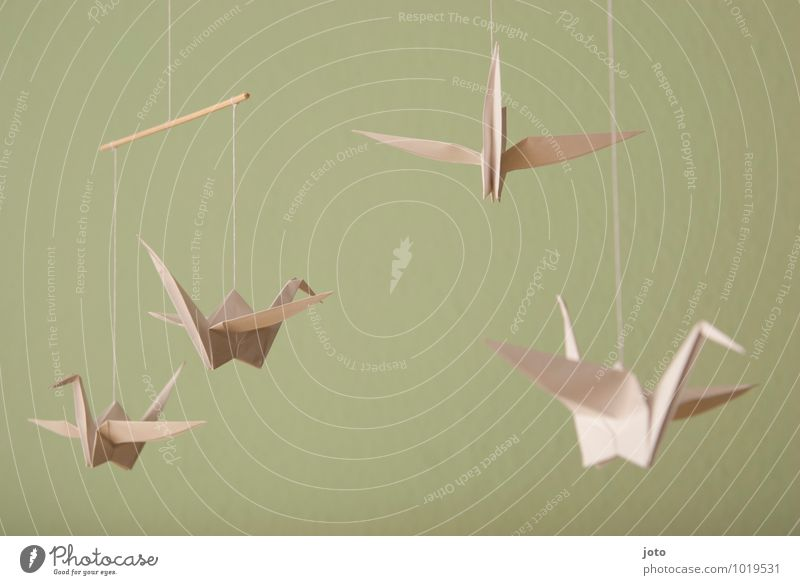 origami Design Contentment Relaxation Calm Baptism Infancy Animal Bird Paper Flying Hang Free Maritime Modern Sustainability Serene Mobility Dream Marionette