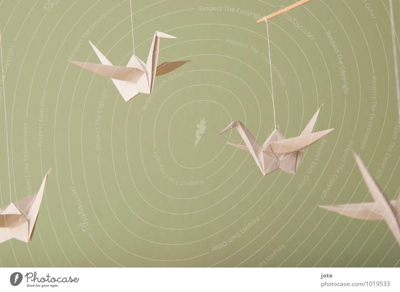 floating cranes Design Contentment Relaxation Calm Baptism Infancy Animal Bird Paper Flying Hang Free Maritime Modern Sustainability Serene Ease Crane Hover