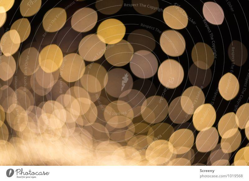 Moody Glittering Illuminate Gold Event Night life Christmas Fair Markets