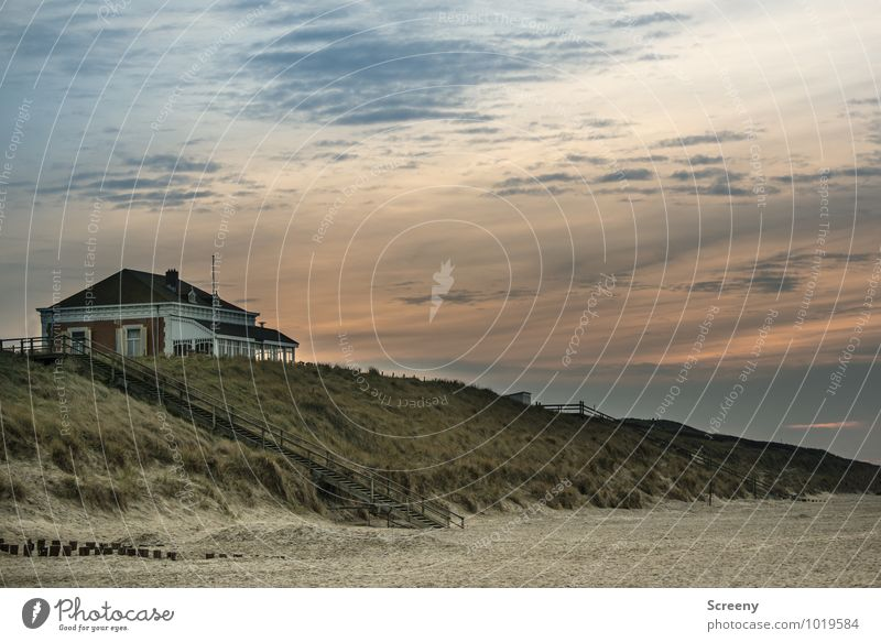 House on the beach Vacation & Travel Tourism Trip Nature Landscape Sky Sunrise Sunset Lakeside Beach North Sea Dune cathedral castle Netherlands