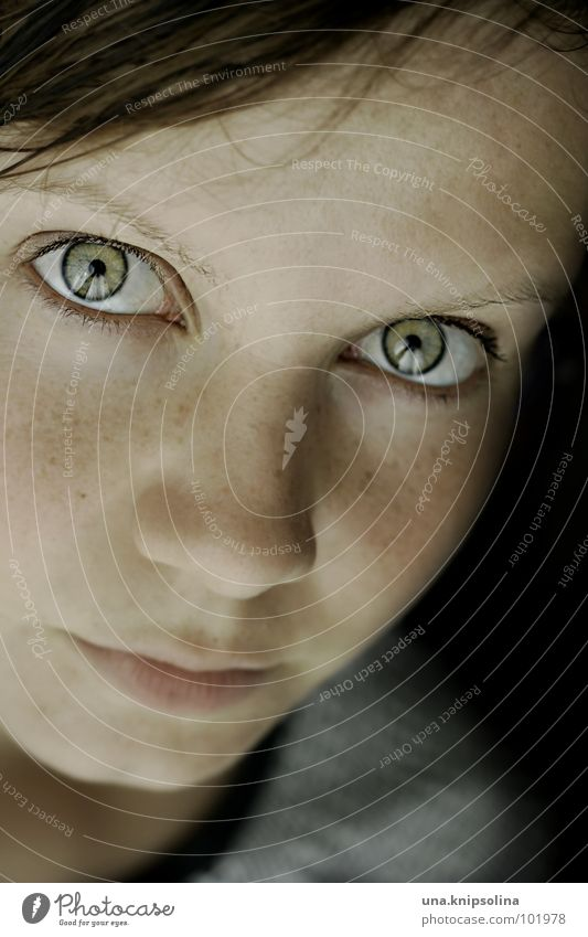 Woman Youth (Young adults) Green Face Adults Eyes Skin Young woman 18 - 30 years Point Freckles Fix Dark-haired