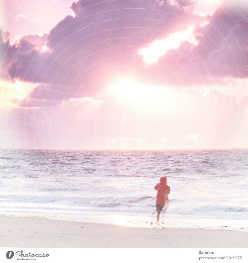 Bye, dear Anne! And always beautiful towards the sun! Human being Woman Adults Body 1 Nature Landscape Elements Water Sky Clouds Sun Wind Waves Coast Beach