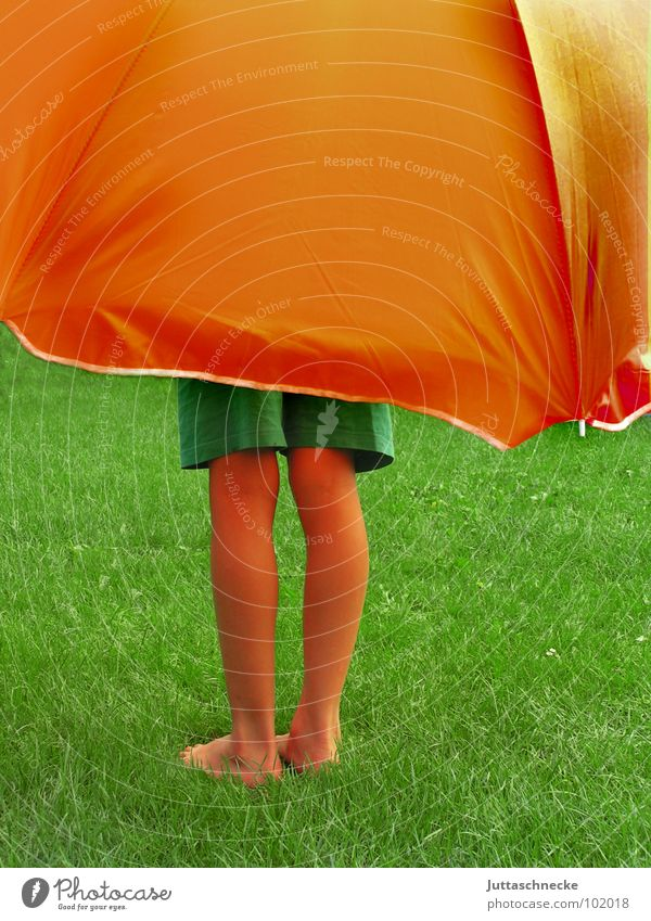 Human being Child Green Summer Joy Meadow Grass Garden Dream Feet Legs Orange Large Safety Protection Trust