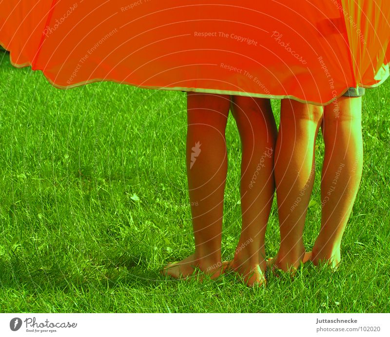 Human being Child Green Summer Joy Colour Meadow Grass Garden Dream Legs Feet Orange Large Safety Protection