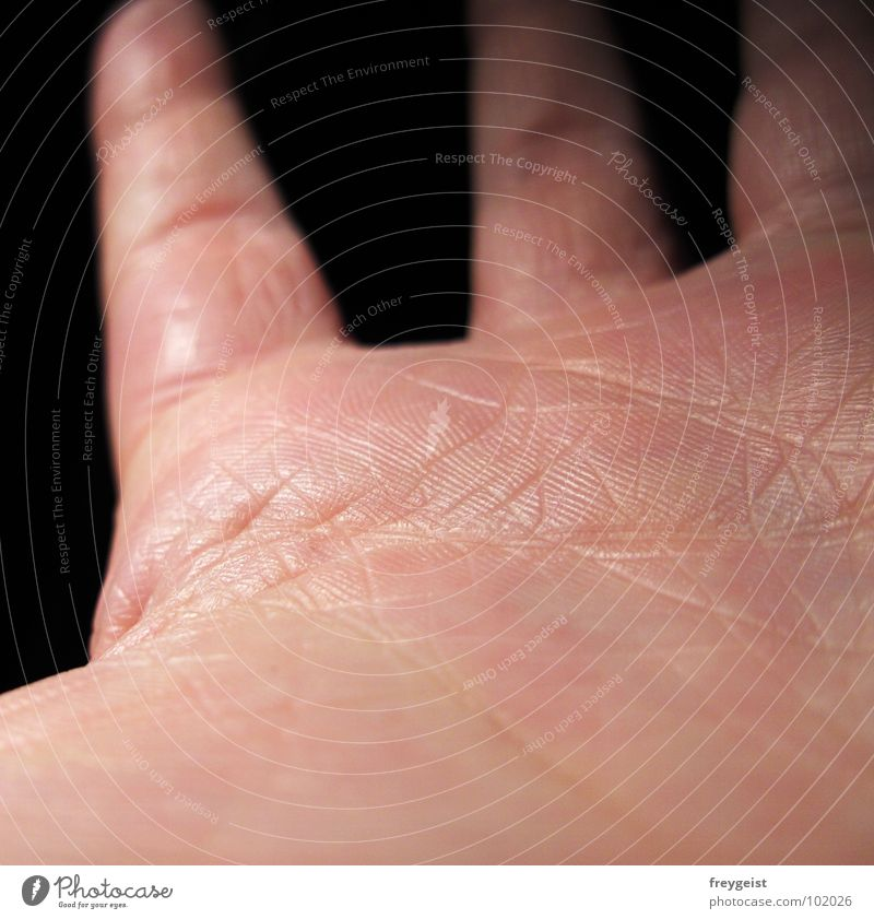 Skin to Skin Hand Organ Fingers Dark Black Background picture Detail stretch out hands Structures and shapes Rachis Catch