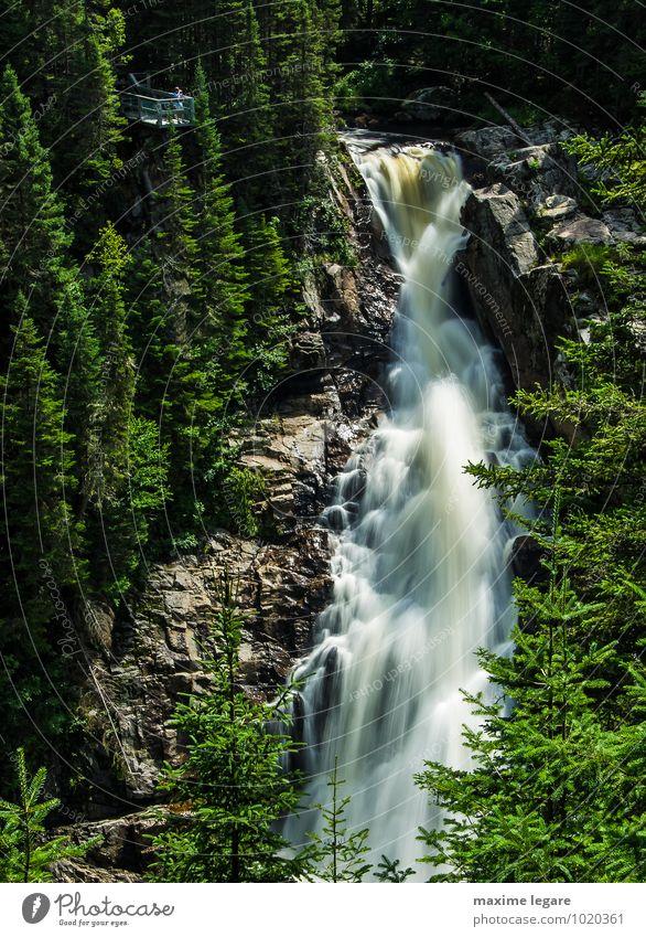 Chute de la rivière noire Nature Plant Water Summer Tree Landscape Forest Environment Mountain Freedom Rock Earth Tourism Bushes Hiking Climate