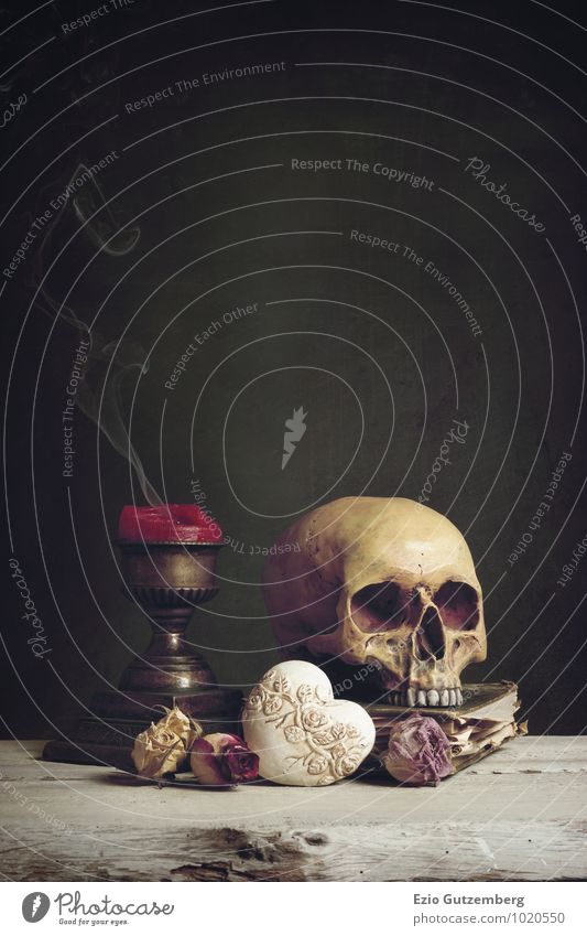 Vanitas with Skull, Candle, Book and Heart Life Human being Art Work of art Painting and drawing (object) Plant Rose Diet Old Love Smoking Sadness Dark Creepy