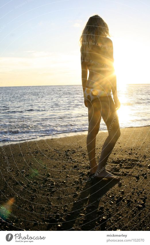 sun goddess Summer Beach Ocean Waves Calm Vacation & Travel Brown Hot Naked flesh Bikini Zone La Palma Sunrise Sunset Stand To enjoy Dream Sand sea Blue chic