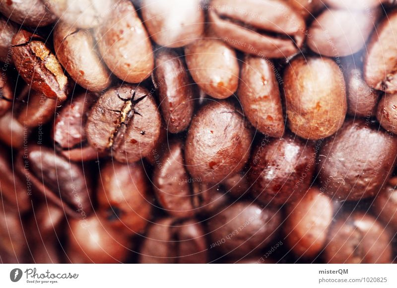 Keans Beans. Design Exotic Esthetic Coffee Coffee break Coffee bean Coffee maker Brown Many Sense of taste Latte macchiato To enjoy Colour photo Subdued colour