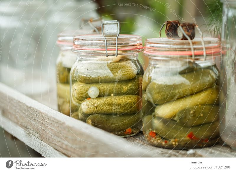 silly season Food Vegetable Herbs and spices Cucumber Gherkin Vinegar Nutrition Breakfast Dinner Organic produce Supply Preserving jar Canned Brunch Side dish