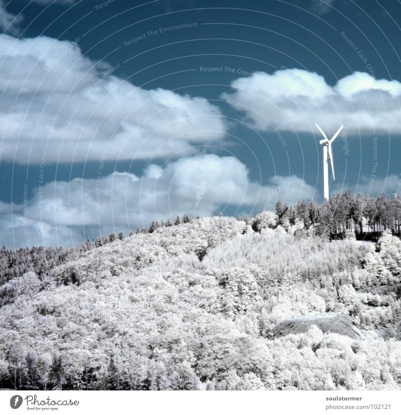wind power Infrared Infrared color Black filter Clouds White Wood flour Grass Meadow Plant Green Tree Forest Edge of the forest Clump of trees Electricity