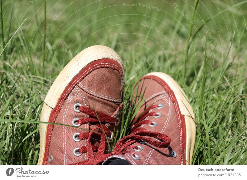 buzzer time Lifestyle Style Well-being Contentment Relaxation Summer Sun Meadow Fashion Footwear Sneakers Chucks Green Red Cool (slang) Serene Calm converse