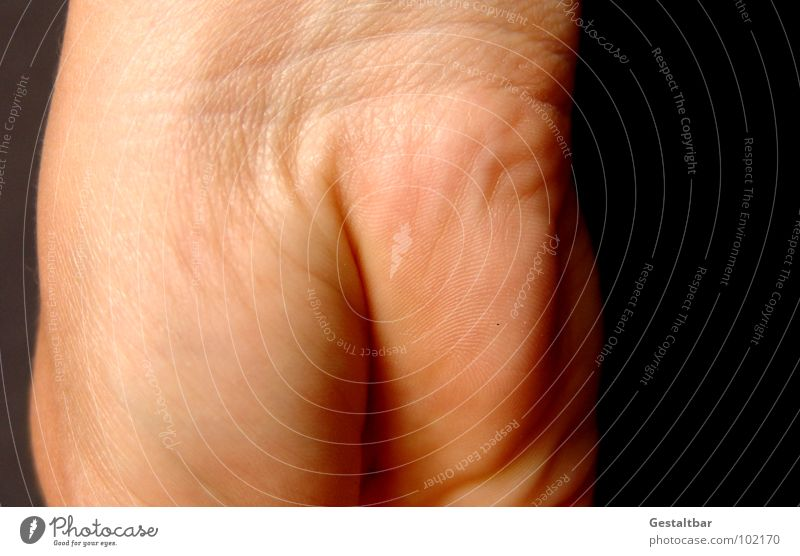 Naked Skin Broken Hind quarters Wrinkles Anatomy Joint Skin color Formulated Hand Macro (Extreme close-up) Close-up Dermatologist Animal Ball of the hand
