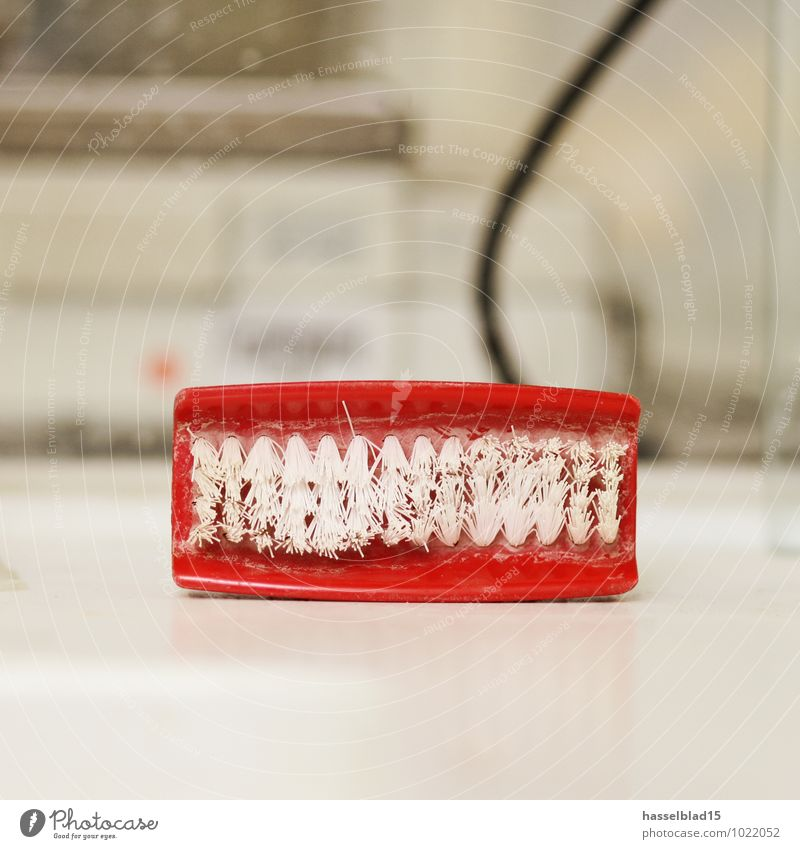 Red Laughter Things Clean Cleaning Symbols and metaphors Teeth False Abrasion Dentist Laboratory Second-hand Handcrafts Brush Toothbrush Dental