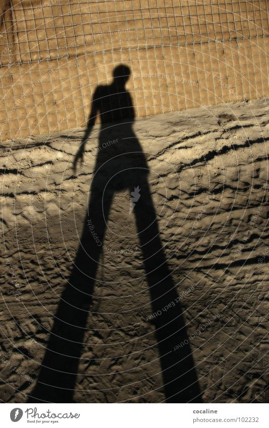 Woman Human being Sand Shadow Earth Construction site Tracks Ghosts & Spectres  Colossus Skid marks Shadow play Drop shadow Earth colour