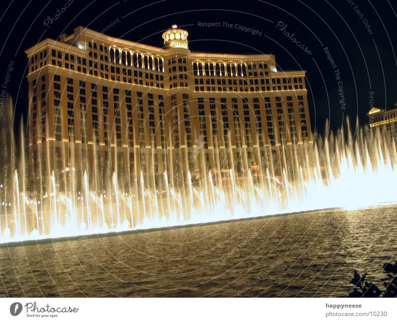 Lake Building USA Hotel Illuminate Visual spectacle Casino Nevada Night shot Fountain Water fountain Las Vegas Bellagio
