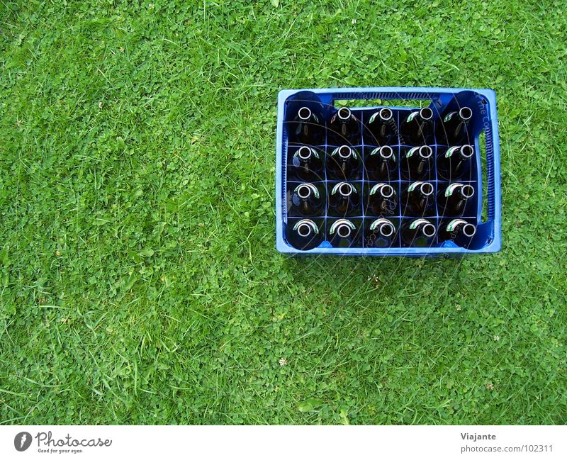 Nature Blue Green Meadow Grass Garden Feasts & Celebrations Park Lawn Level Gastronomy Beer Refreshment Bottle Alcoholic drinks Alcohol-fueled