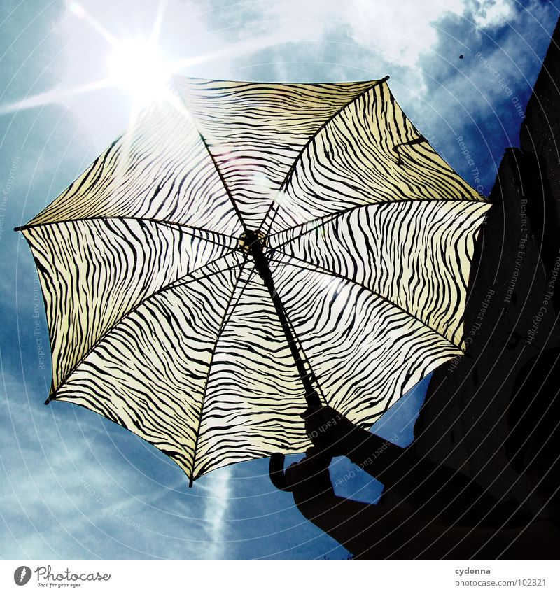 Sky Sun Summer Warmth Style Action Things Protection To hold on Sunshade Radiation Striped Dazzle Brilliant Weather protection UV radiation